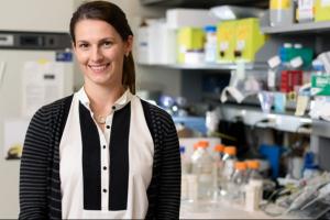 Dr. Erin Lashnits
