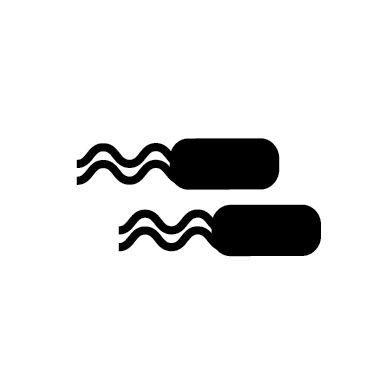 Bacterial Pathogens