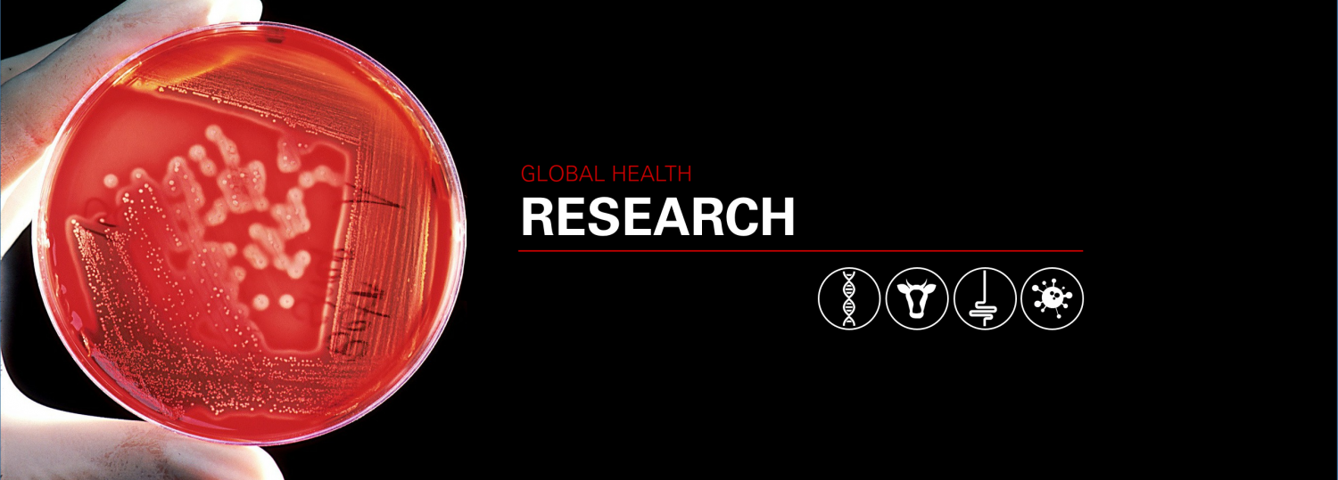 Global Health Research